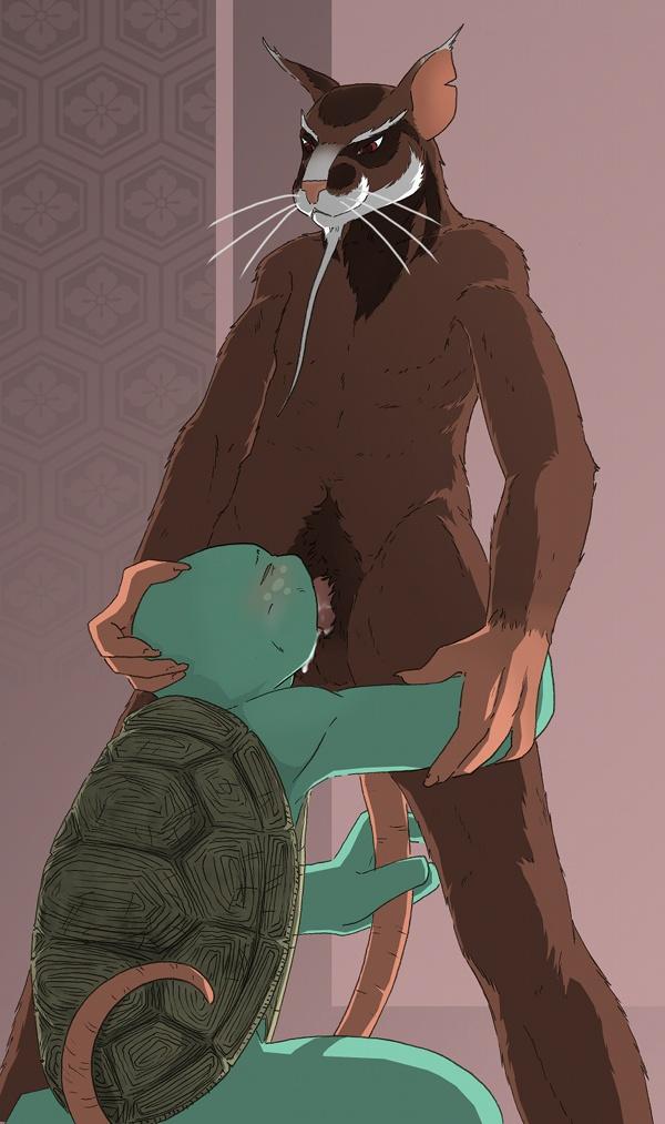 mutant teenage turtles ninja venus Phantasy star universe partner machine