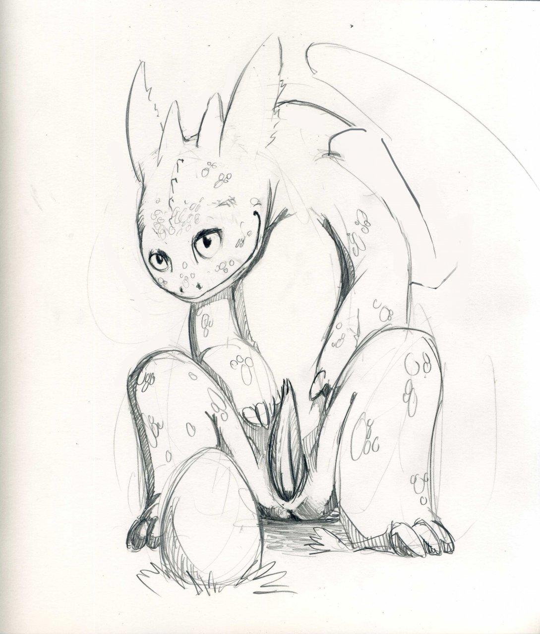 dragon how your hentia to train Dragon prince rayla