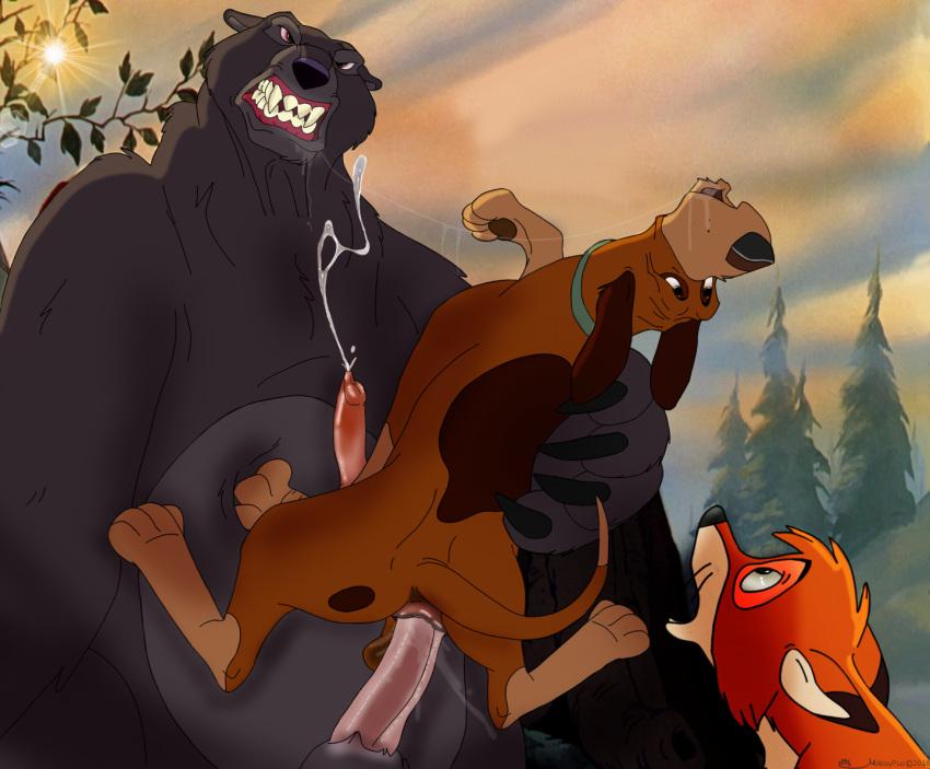 and fox 2 hound the cash Avatar the last airbender hahn